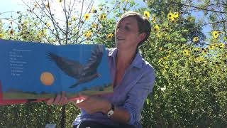 "International Vulture Awareness Day: ""Vulture View"" Storytime"