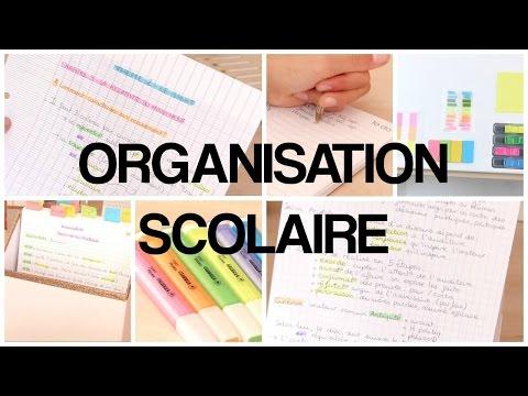 organisation-scolaire---1