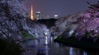 #769. Токио (Япония) (классное видео)(Самые красивые и большие города мира. Лучшие достопримечательности крупнейших мегаполисов. Великолепные..., 2014-07-03T04:12:42.000Z)