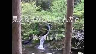 岸田川の無名滝