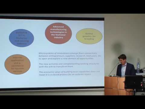 Dominique Forray - Smart specialisation strategies in the EU and their policy impact