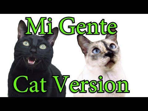 Mi Gente – Cat Version [J Balvin, Willy William]