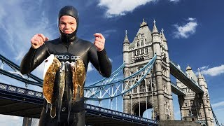 Spearfishing from London with 2018 EU Bass Ban + Catch and Cook