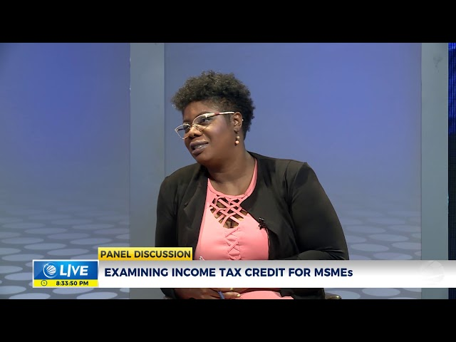 Examining the Senate Bill to Facilitate Income Tax Credit for MSMEs | Panel Discussion | CVMTV