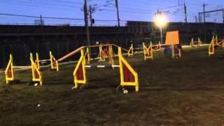 agility lesson 31-2