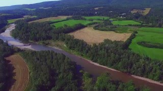 Save The Salmon - Cape Breton