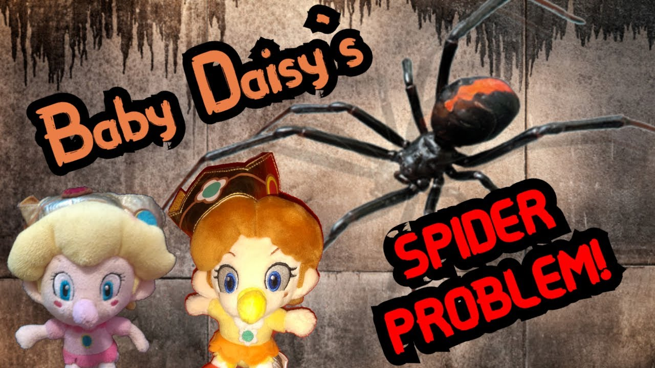 Baby Daisy's Spider Problem!