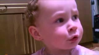 смешные ролики про детей и животных