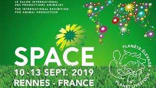 Space 2019 - Concours bovins du mercredi 11 septembre 2019