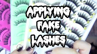 How To Wear Fake Eyelashes | Toxic Tears