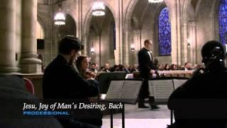 iconiQ String Quartet - Traditional Wedding Ceremony Montage (String Trio ver.)