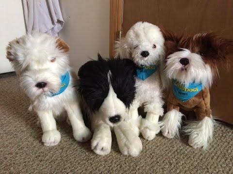 Hotel for Dogs Plush Collection- FAO Schwarz - YouTube