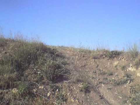 gola planina ljeto 2012