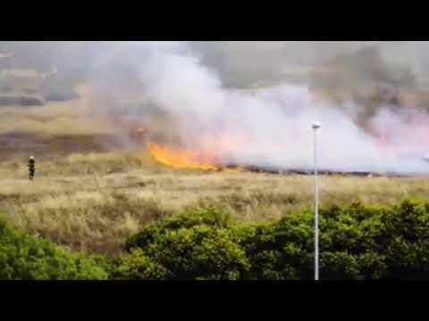 Incendio en el cerro de Los Leones