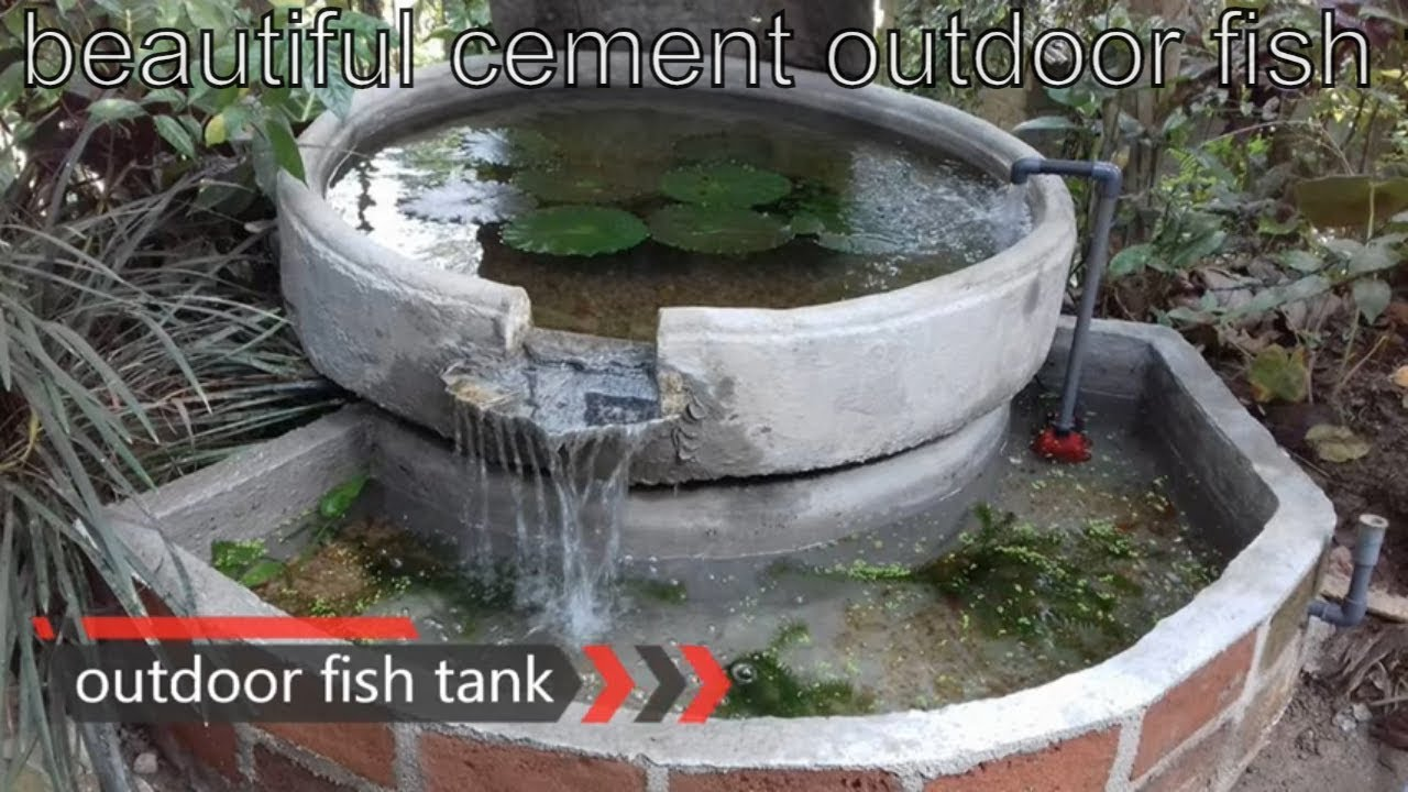 Beautiful cement outdoor fish tank youtube for Outdoor fish tank