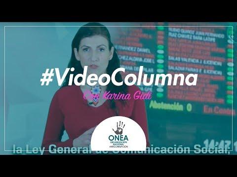 Aristegui Noticias Videocolumna de Karina Gidi: #LeyChayote