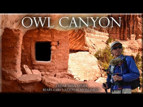 Owl Canyon, Cedar Mesa, Utah. Bears Ears National Monument