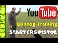 Dog Training Part 11 - Starting Pistol