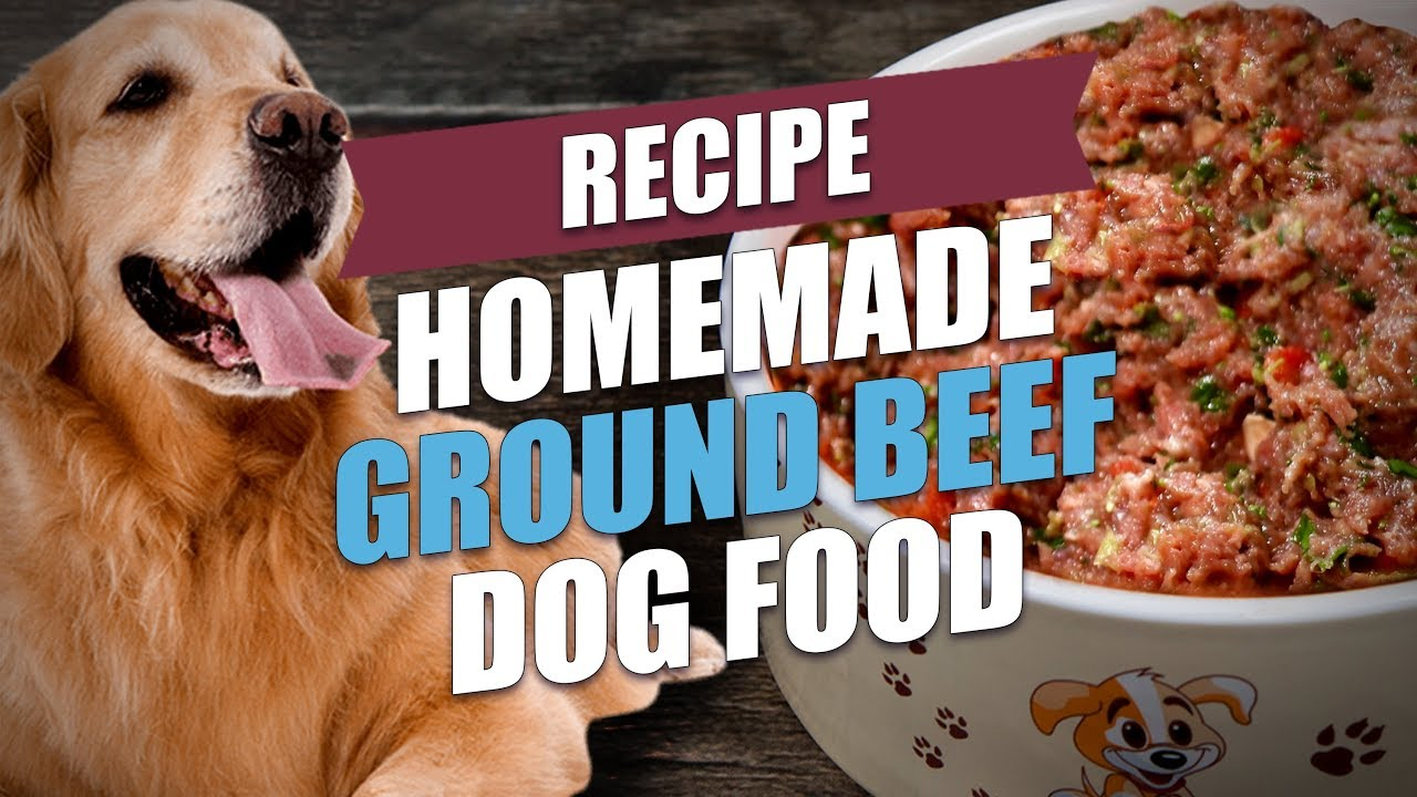 Homemade Ground Beef Dog Food Recipe