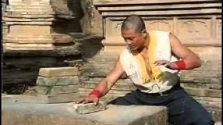Shaolin Hard Qi Gong - Iron Palm Demo.flv