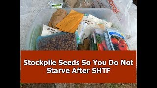 Stockpiling Seeds For Doomsday / SHTF