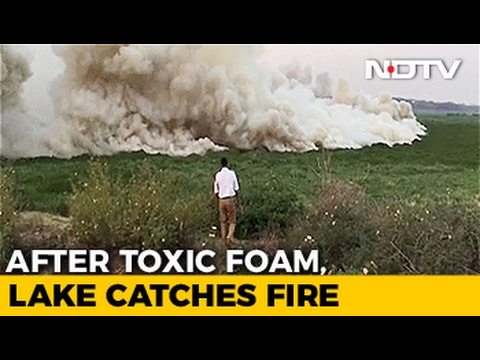 Watch: Bengaluru's Bellandur Lake Catches Fire