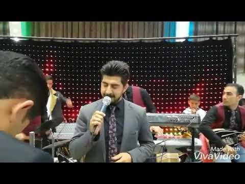 Sharam henare2019