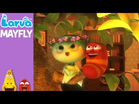 [Official] Mayfly - Mini Series from Animation LARVA