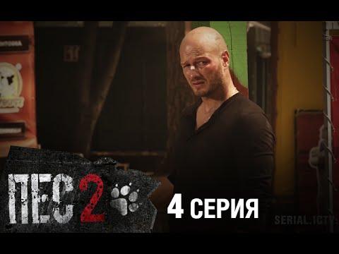 Пес 4 сезон 1-44 серия (сериал 2018) все серии смотреть онлайн
