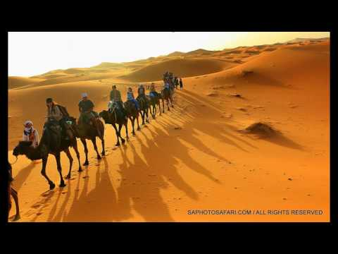MOROCCO! A CAMEL CARAVAN - WITH BERBER GUIDES - INTO THE SAHARA...
