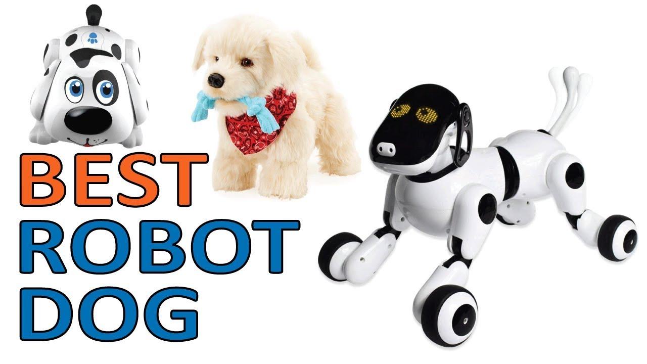 best robot dog