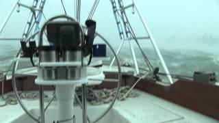Hurricane Wilma Adventure