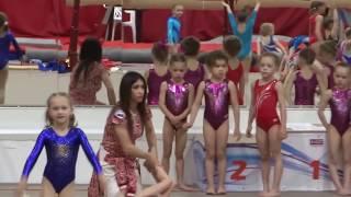 Соревнования спортивная гимнастика 2-ой юношеский.