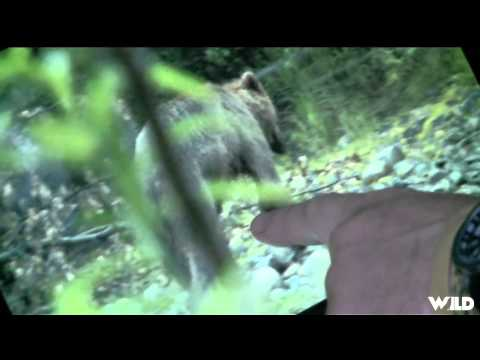 Easton Bowhunting TV - Alaska Brown Bear Part 2