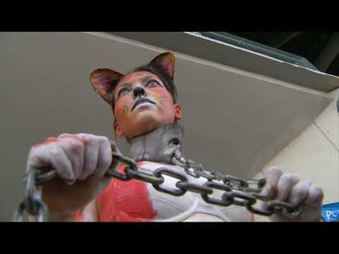 Can PETA & ALF Naked Girls In Cages Convince U Love Animals, Go Vegan & Live Cruelty Free? - 동영상