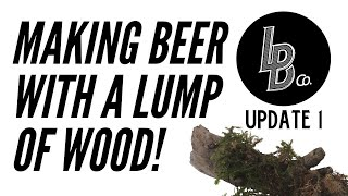We make beer using a lump of wood! Project Saison Update 1 #Beer #Brewery