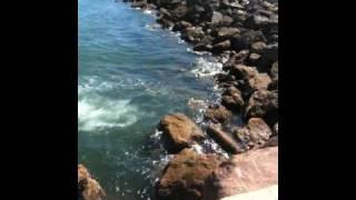 Molhe de portimão :D