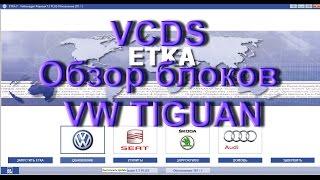 Обзор  Кодировок Блоков  Volkswagen Tiguan в VCDS /Вася Диагност