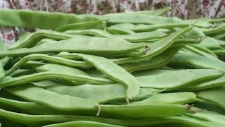 """""""french Beans Recipe"""" """"vegetable"""" """"vegetarian Recipes"""" """"suriname Food"""""""