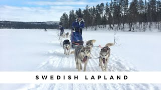 Swedish Lapland, Husky Sledding, The Ice Hotel