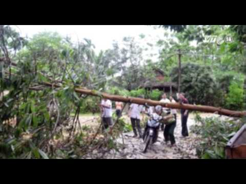VTC14_Nghệ An: Một trẻ tử vong do sét đánh