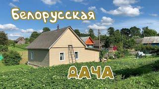 Белорусская дача Лето во время коронавируса Отпуск в деревне