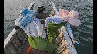 豬豬出海收籠爆貨了,成堆海貨越拉越大,皮皮直喊發了發了