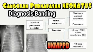 SAXE   Neonate Pneumonia.
