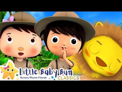 Going on a Lion Hunt - The Scary Lion Song | Nursery Rhymes and Baby Songs | Little Baby Bum