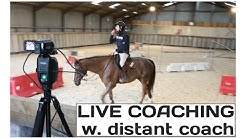 PIXIO live coaching pack - for equine and other sports