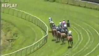 Horses Avoid Hitting Man On Racetrack During Race