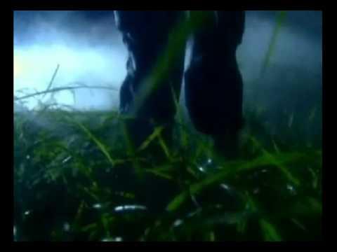 Slipknot Before i Forget (Horror)