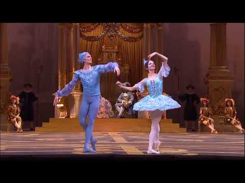 Sleeping Beauty Bolshoi 2017 Blue Bird