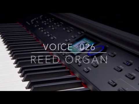 Williams Symphony Grand Voice 026 Reed Organ Performed by Kris Nicholson
